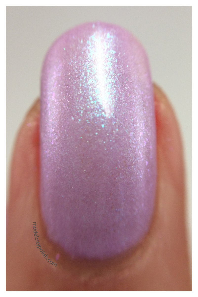 Shrinking Violet 6