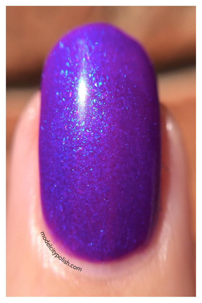 Purple Dragon 4
