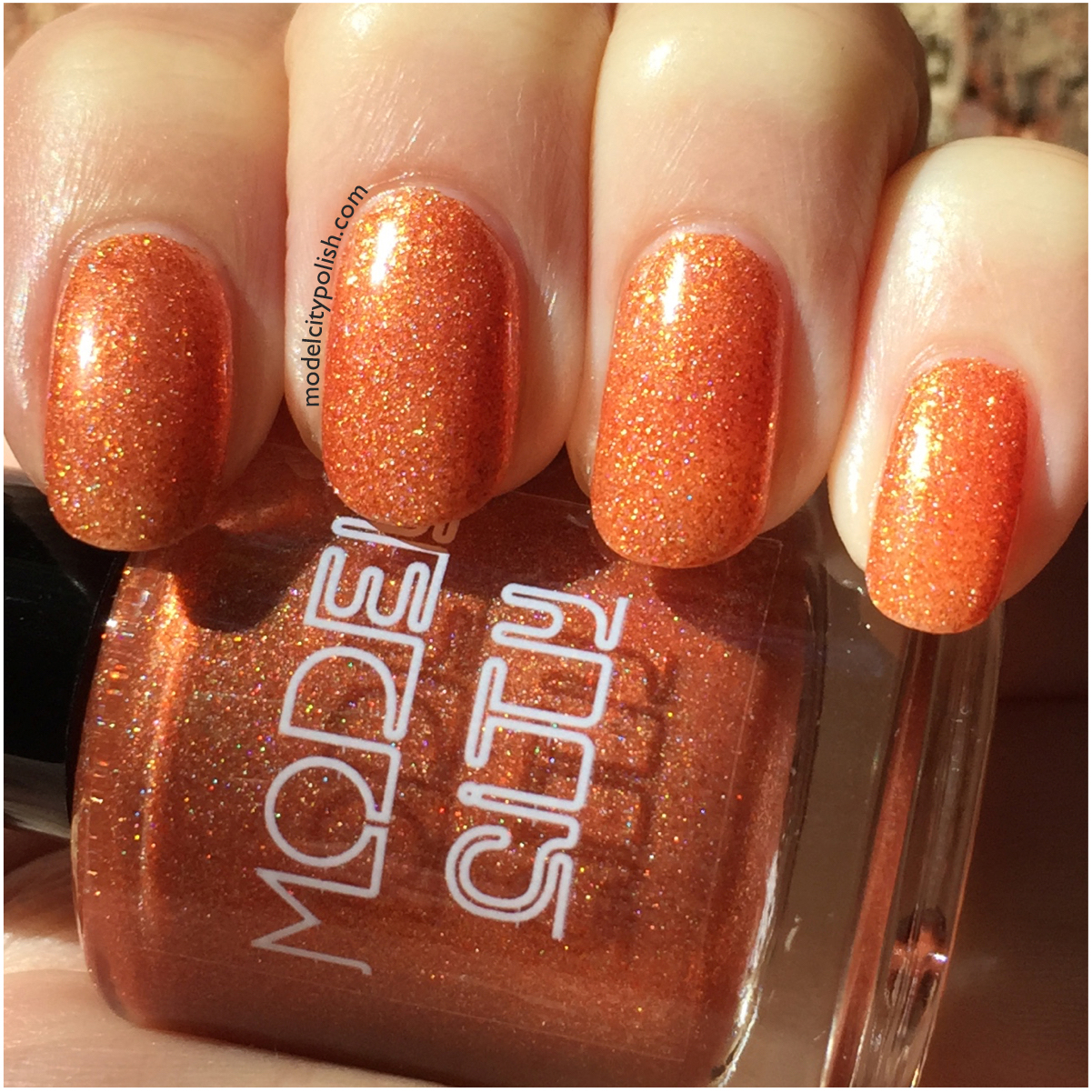 Pumpkin Spice 1