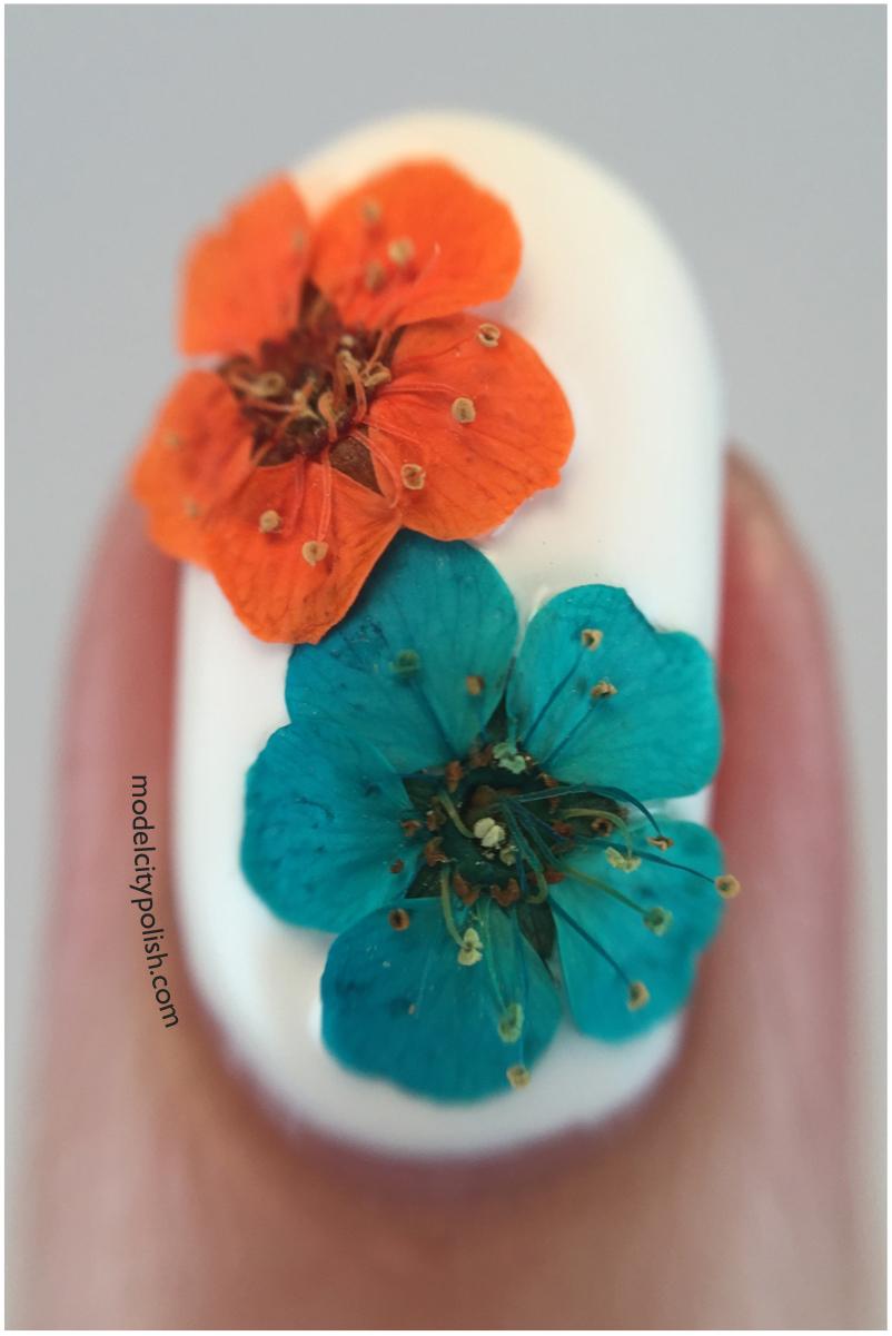 Pretty Petals 5